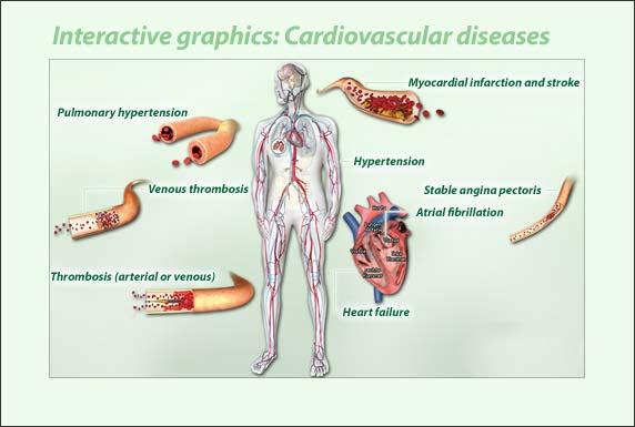 cardiovascular mohaseban